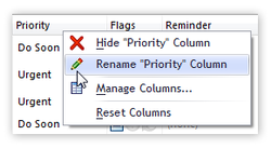 Rename columns (fields) - in the Ultimate edition
